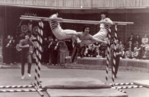 Государственное училище циркового и эстрадного искусства им. М.Н. Румянцева (Карандаша)
